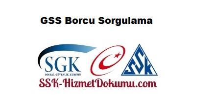 GSS Borcu Sorgulama
